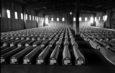 Сребреница, вечната тага на човештвото