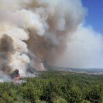 Шилегов испрати три цистерни со вода и три противпожарни возила во Пехчево